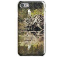 The heron iPhone Case/Skin