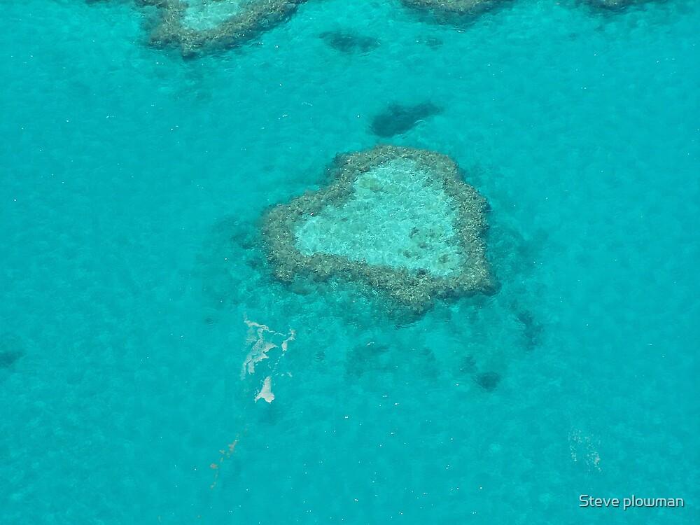 Heart Reef by Steve plowman