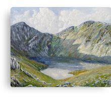 The Minffordd Path to Cader Idris. Canvas Print