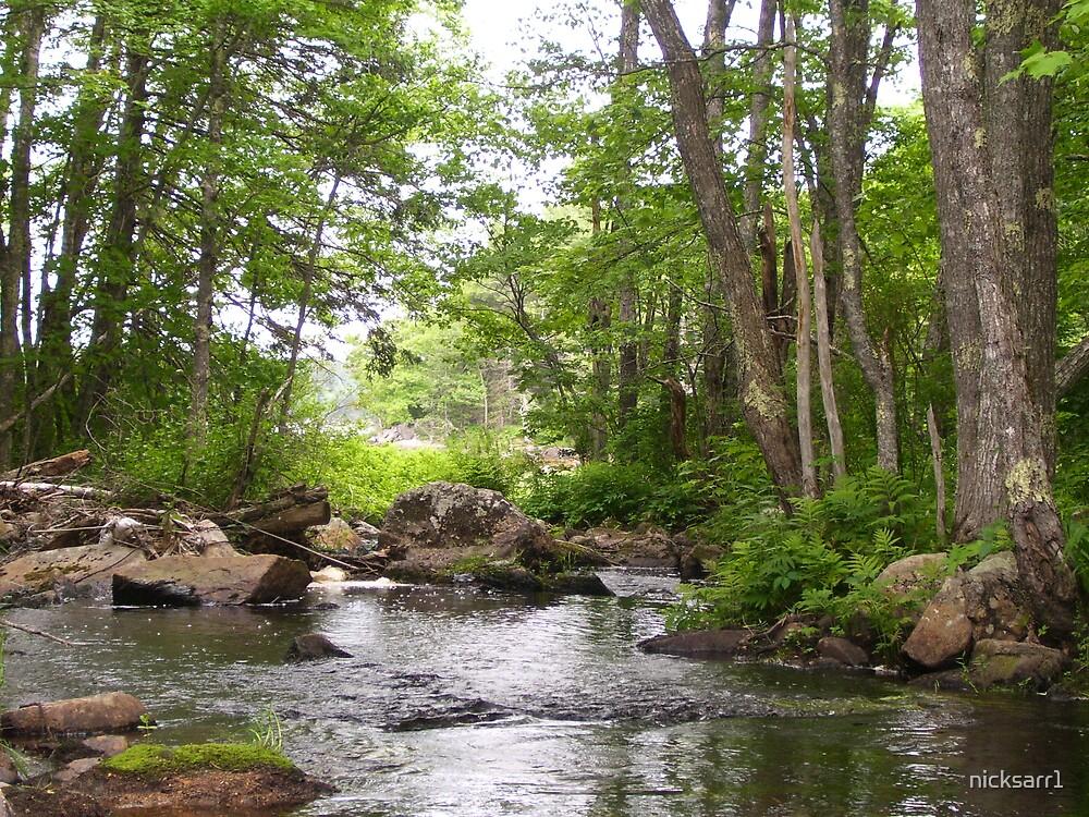 eastern maine river by nicksarr1