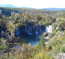 Kravica waterfalls  by darioo