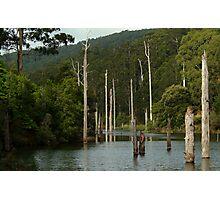 Lake Elizabeth Otway's Photographic Print