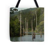 Lake Elizabeth Otway's Tote Bag