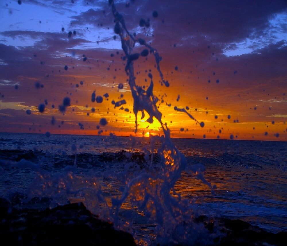 Splash by Elias