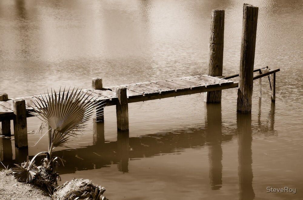 Old Dock by SteveRoy