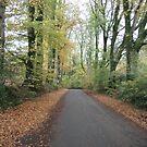 autumns end by brucemlong