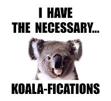 Koala Qualifications by TheBestStore
