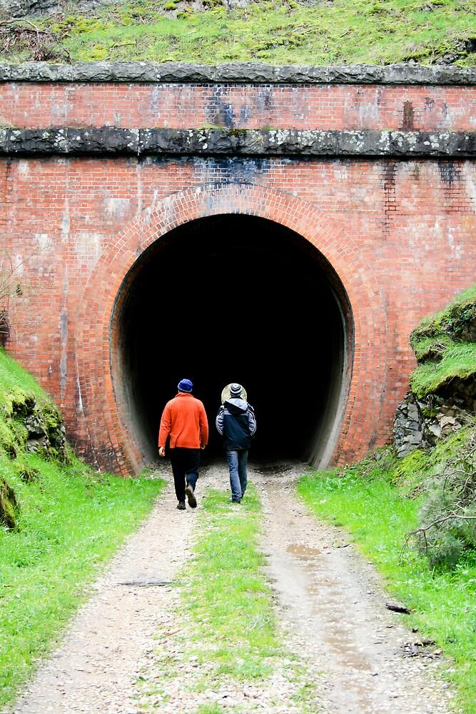 old railway tunnel by TimmyF