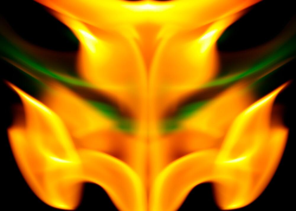 Flame Tulip by Elias