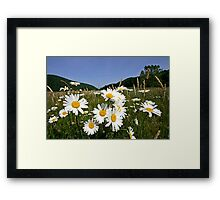Flowers Against the Mountains Framed Print