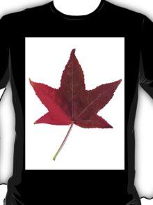 The colourful Sugargum leaf T-Shirt