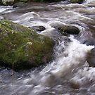 Rock in a stream by Steve plowman