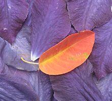 Burning Violet by mmlko