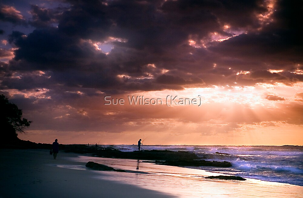 Morning Glory by Sue Wilson (Kane)