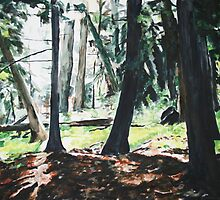 Wet Forest by Dawn Hollister