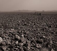 Desolate, Desperate and Dehydrated by Benno