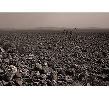 Desolate, Desperate and Dehydrated Photographic Print
