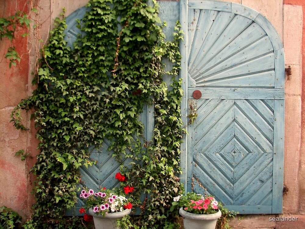 Blue door by sealander