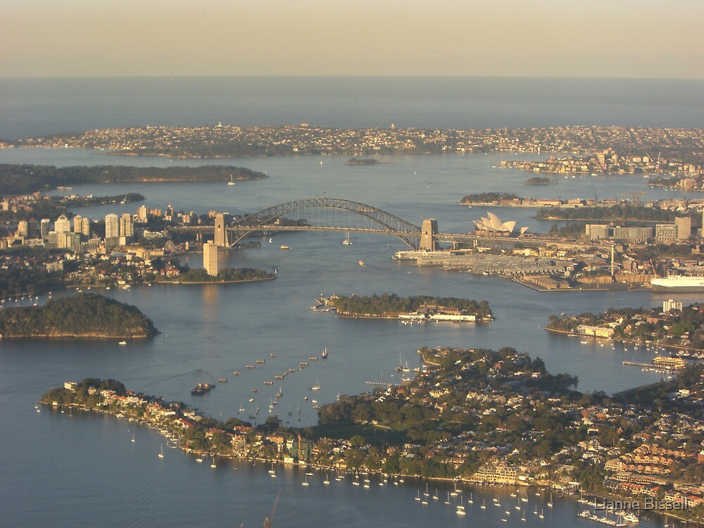 Sydney from the air by Lianne Bissell