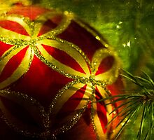 Christmas Ornament by Nicole  Markmann Nelson