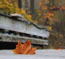 Maple Leaf's Last Stand by Gilda Axelrod