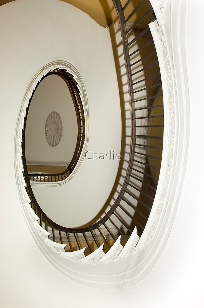 Colonial Stairwell, Charleston by Charlie