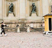 Lone marcher, Stockholm, Sweden by sasi