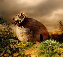 Poppy house in a sunny day by JBlaminsky
