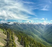 Obstruction Point Road by yellocoyote