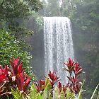 Milla Milla Falls ~Cairns~ by Stormwolfe