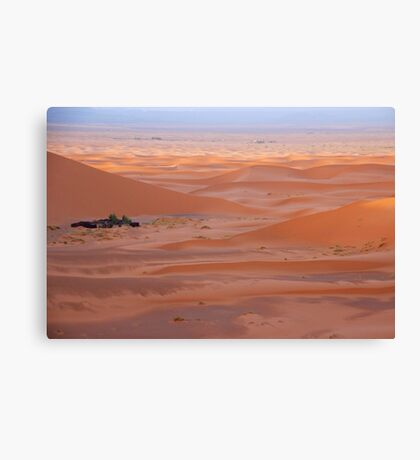 Desert #6 Canvas Print