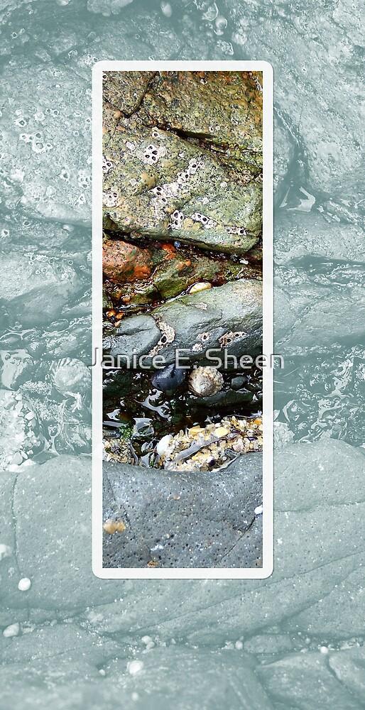 The Rock Pool by Janice E. Sheen