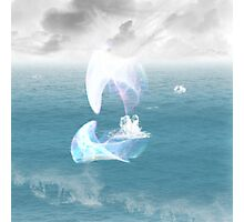 An ethereal flying fish Photographic Print