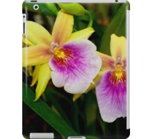 Gorgeous Miltonia Sunset Orchid iPad Case/Skin