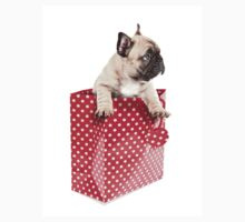 Gift Wrapped Frenchie T-Shirt