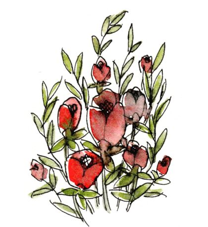 Red Tulips Sticker
