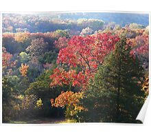 Autumn in the Ozarks #3 Poster