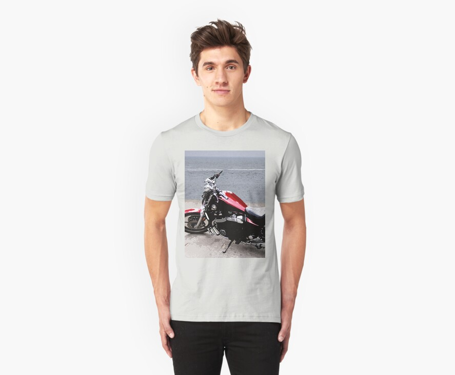 Beach Bike by LindaLou1952