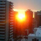 beauty sunset by oilersfan11