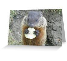 cutey groundhog Greeting Card