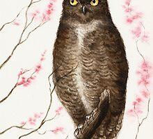 Spring Owl by Mariya Olshevska