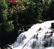 September Falls by Christopher  Tarmann