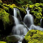In The Green by Charles & Patricia   Harkins ~ Picture Oregon