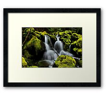In The Green Framed Print