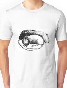 Sleeping mice Unisex T-Shirt