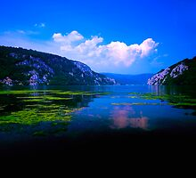 Beautiful Danube by Miodrag Bogdanovic