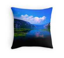 Beautiful Danube Throw Pillow