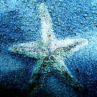 Crystal Starfish by Linda  Tenenbaum