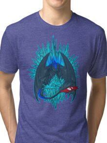 Game of Dragons - HTTYD2/GoT (NO Text) Tri-blend T-Shirt