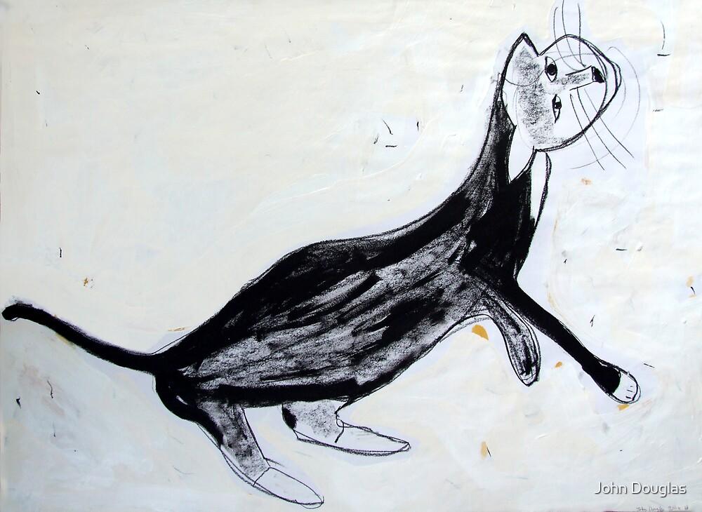 cat1 by John Douglas